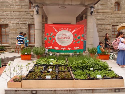 綠市集在臺博館南門園區設有「可食風景」展區,提供民眾在自家種菜又能欣賞的盆栽。攝影:詹嘉紋。