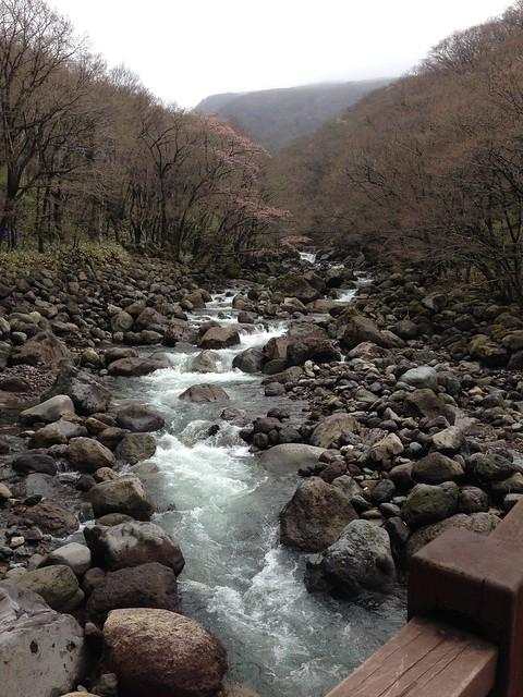 Beautiful stream at Mt. Hallasan National Park