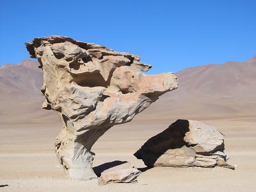 Le Sud Lipez: l'arbre de pierre