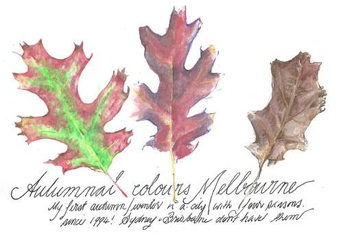 31mar15  autumn