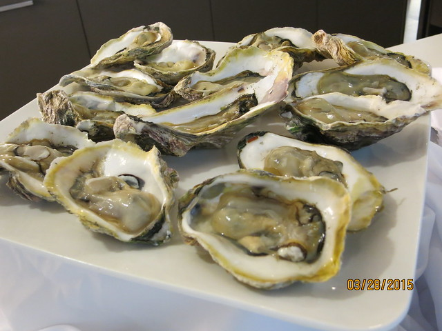 IMG_5677:  Oysters