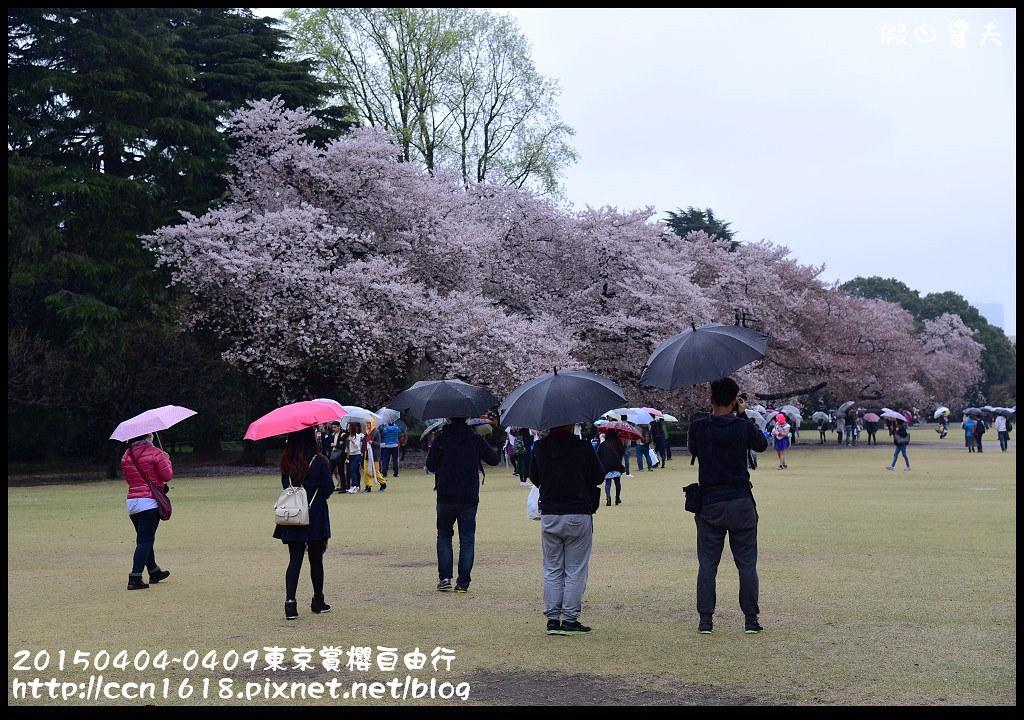 20150404~0409東京賞櫻自由行DSC_2621