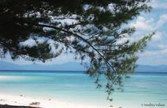 Malaysian Borneo Sabah