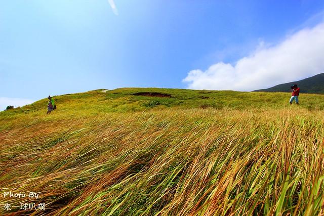 蘭嶼-青青草原38