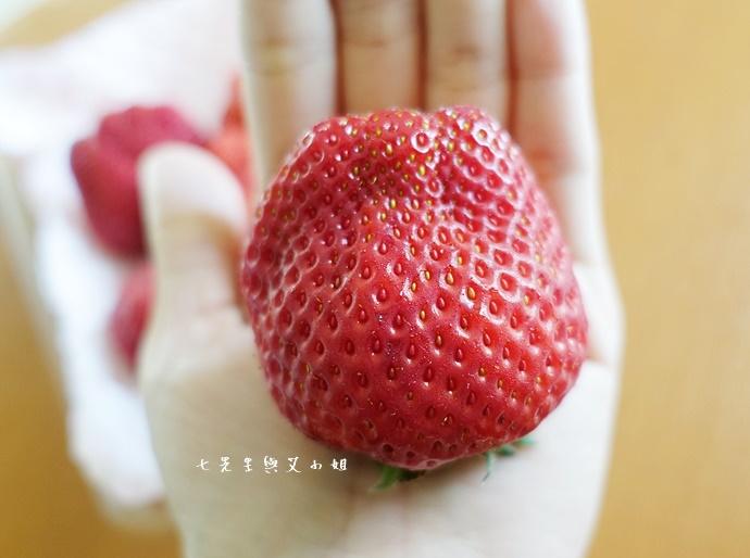27 HARBS 草莓泡芙蛋糕 ROYAL QUEEN 草莓 FOOD PARC 吉祥寺