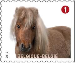 09 Animaux de compagnie timbref