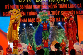 Dragon dancers on stage