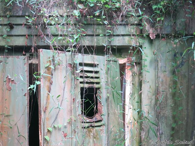 Talbot's Hill Bunker 07