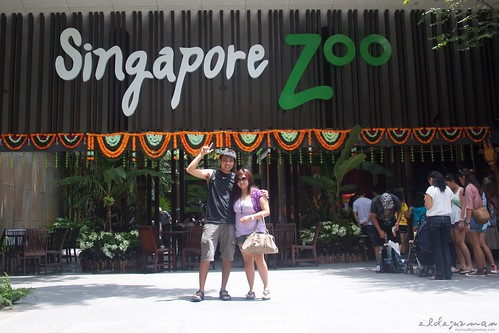 welcome-sg-zoo