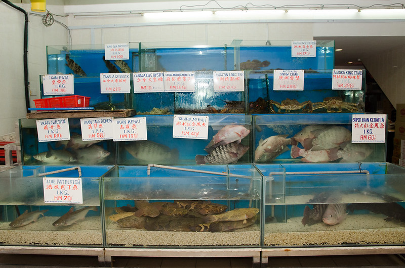 Fresh and live seafood at Green View Restaurant 长青海鲜饭店