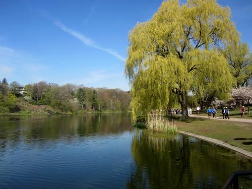 Toronto: High Park Grenadier Pond