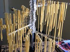 pasta grows on trees