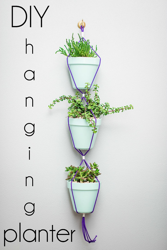 DIY hanging planter tutorial succulents #LongLastingScent