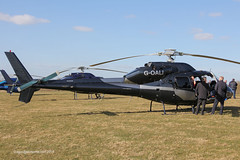 G-OALI - 1981 build Aerospatiale AS355 F1 Ecureuil II, visiting the 2015 Cheltenham Festival