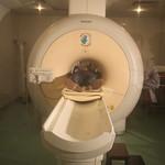 Klinik Nörobilim Laboratuvarı 3