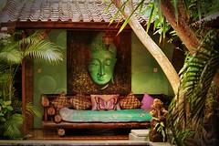 Kebun Damai , Bali 2014