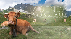 Agenda Associatif 2015