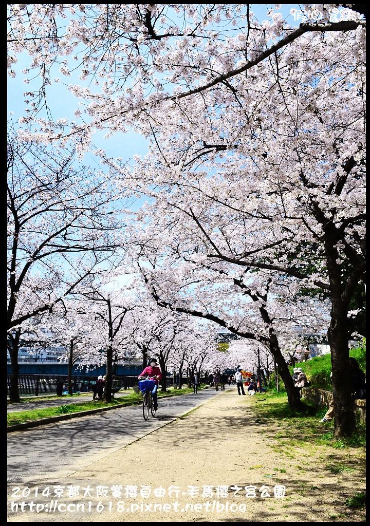 2014京都大阪賞櫻自由行-毛馬櫻之宮公園DSC_2029