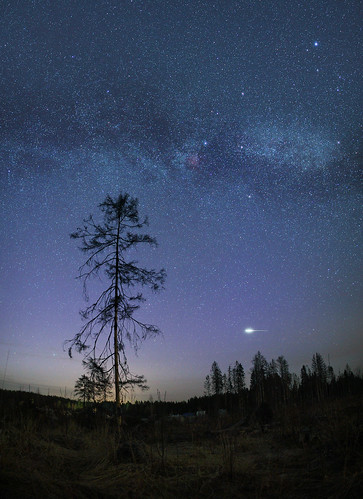 wood trees sky panorama nature night forest stars spring ngc north wideangle astro astrophotography lyra flare april fields astronomy nightsky 24mm vega milky astrophoto stargazing milkyway iridium deneb cassiopea 5d2 canon5d2 samyang24