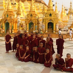 Little Monks of Shwedagon