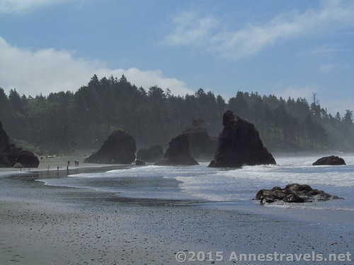 People and sea stacks on Ruby Beach, Olympic National Park, Washington
