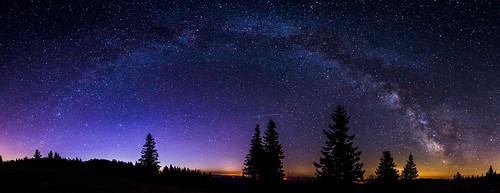 Milky Way Arch over Kandel's Tree