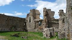 Château des cornes d'Urfé, intérieur
