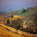 Cumbrian Valley by Peeblespair