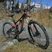 Coed y Brenin Trek Hire Bike