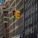 NYC by robert.molinarius