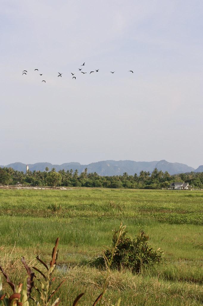 Langkawi Malesia vinkit