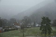 Averse de neige sur Coo