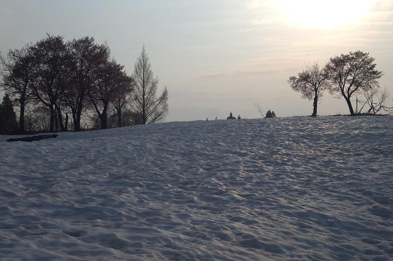 残雪と桜 #2_201504