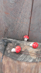 red-spotted toadstool necklace