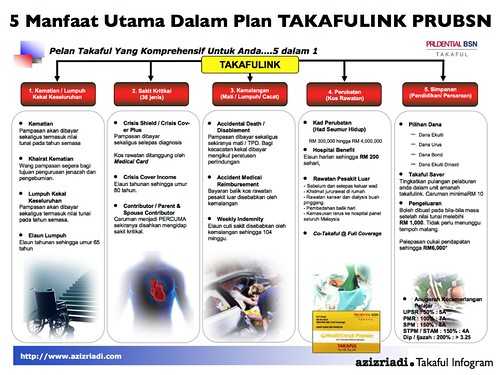 5 in 1 Plan Infogram