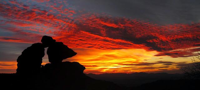 Twilight in the (Chiricahua) Wilderness