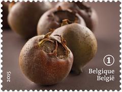13 FRUITS OUBLIÉS timbre 9 nèfle