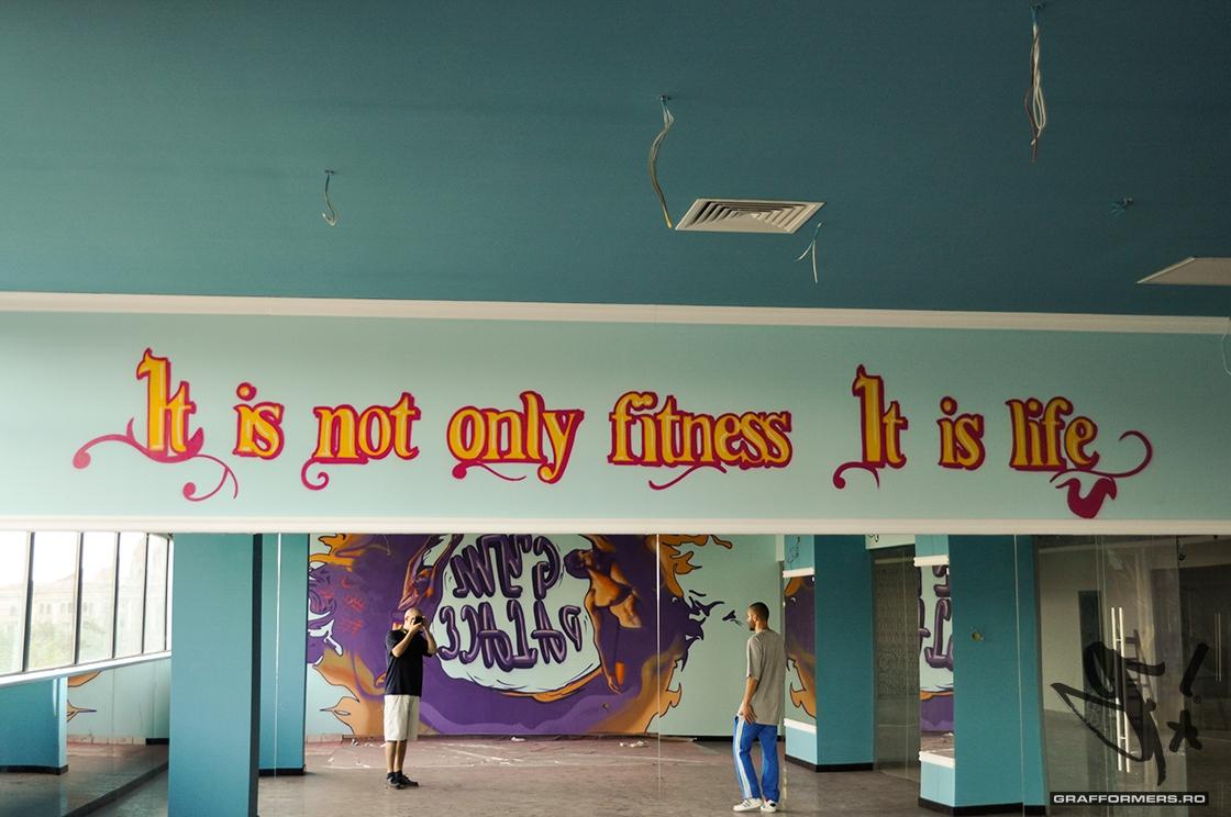 02-20130425-gym-palace-oradea-grafformers_ro