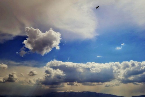 pictures show blue sunset sky cloud sun sunlight white color macro colors clouds sunrise reflections happy photo day skies heart photos sofia ngc picture dramatic stormy stranger textures bulgaria cielo imagine valentines blanche heavens creatures heard strangerbg