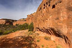 Upper Pollock Canyon (5-10-15)