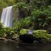 Rainy day at Hopetoun Falls by beaugraph