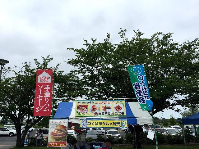 hollyhock-tsukuba-foods