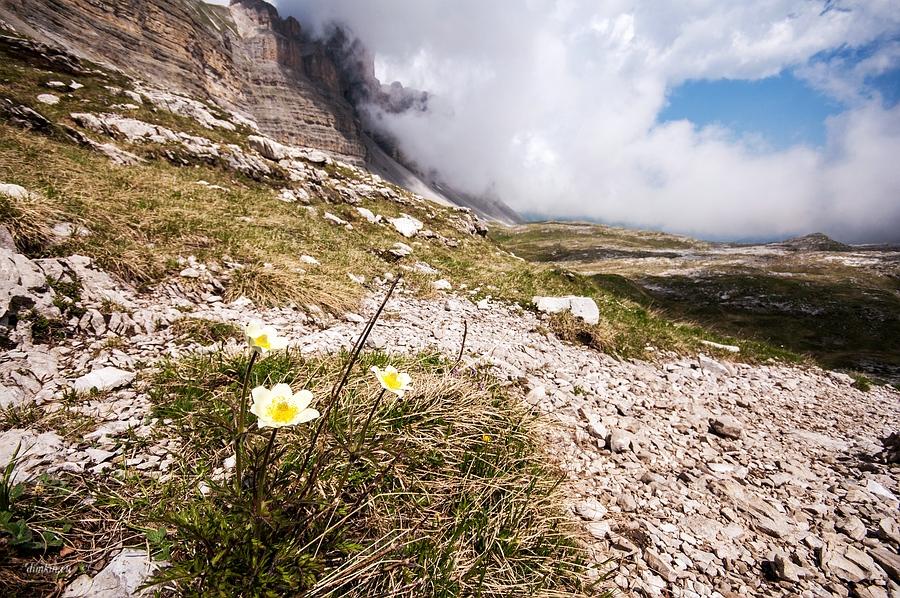 Tuenno, Trentino, Trentino-Alto Adige, Italy, 0.001 sec (1/1250), f/8.0, 2016:07:01 10:00:40+00:00, 11 mm, 10.0-20.0 mm f/4.0-5.6