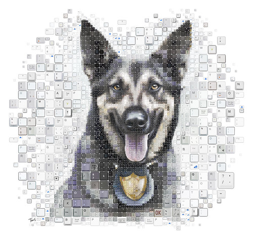 I AM YOUR WATCHDOG! (Information Security on the Wall Street Journal)