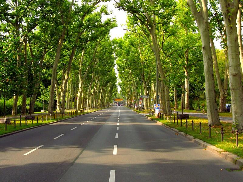 Avenida que corta o Treptower Park - AgendaBerlim.com Foto: Pacelli Luckwu