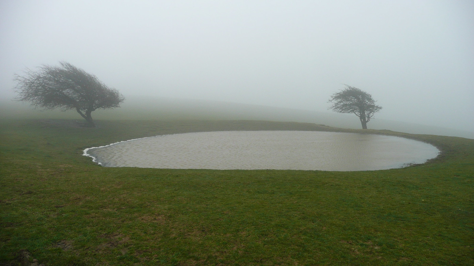 Dew pond Views of the South Downs (28th March 2015, low cloud, gales)