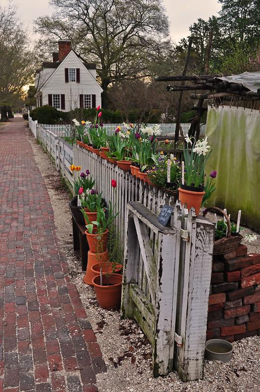 Colonial Garden (5)