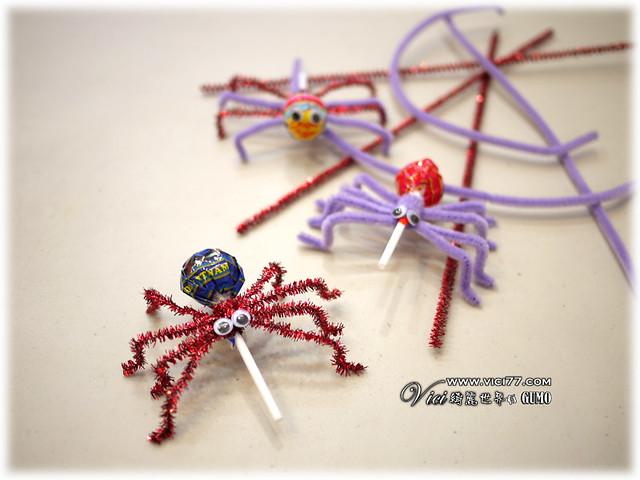 0331毛根蜘蛛034