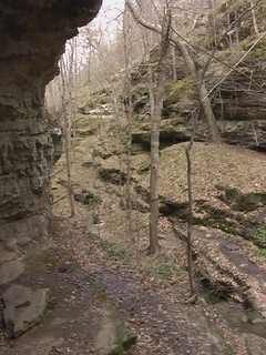 Little Grand Canyon, Shawnee National Forest, IL, #12