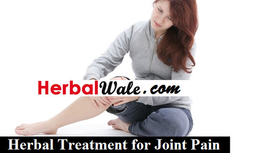 Herbal Treatment for Joint pain